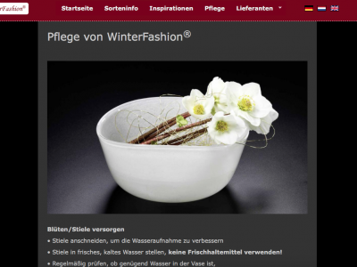 Website Winterfashion